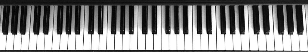 piano keys (black and white)