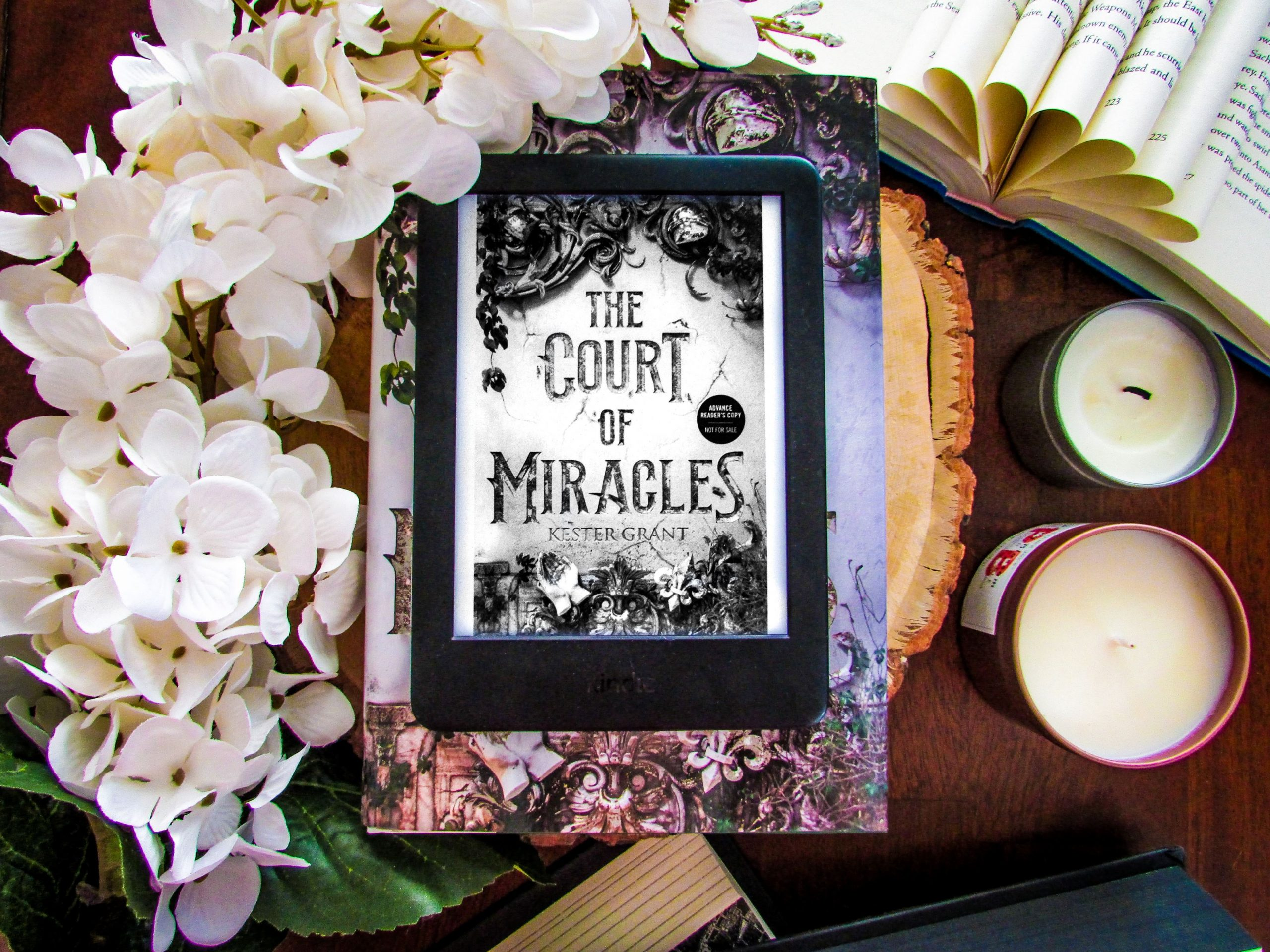 Read more about the article The Court of Miracles by Kester Grant
