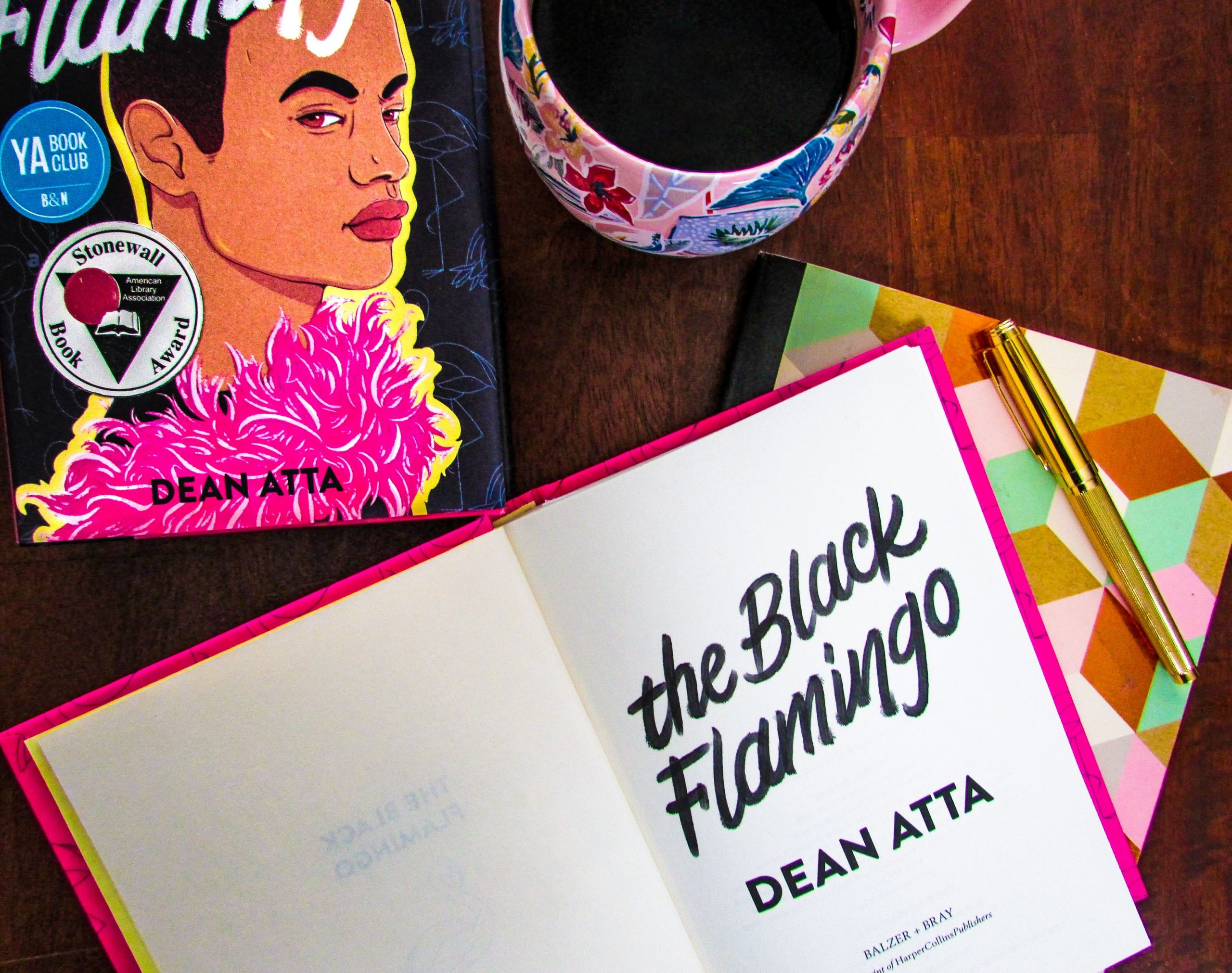 Read more about the article The Black Flamingo by Dean Atta