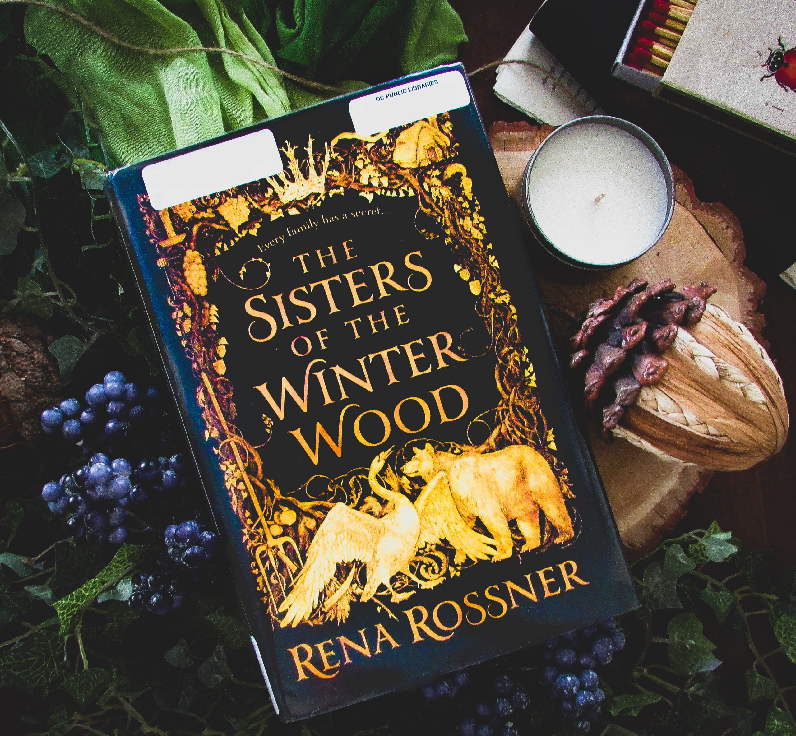 Read more about the article The Sisters of the Winter Wood by Rena Rossner